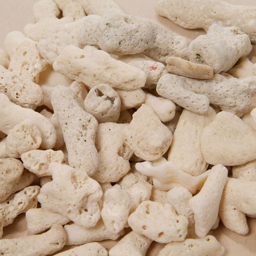 新胡  サンゴ砂  2㎏ 粗目 15番