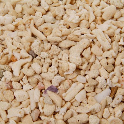 新胡 サンゴ砂  2kg 5番